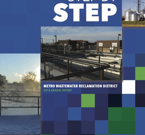 2018 Annual Report: Step by Step
